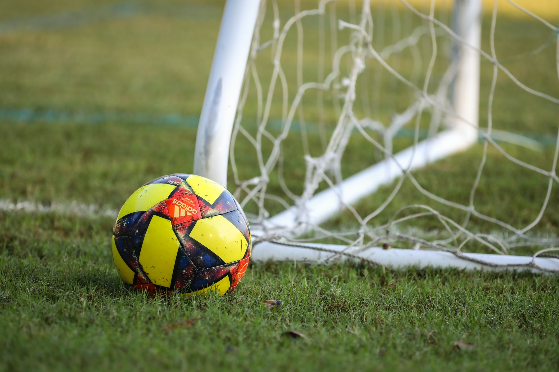 red blue and yellow soccer ball on green grass field